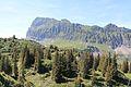 Trail to Silberenalp - panoramio (24).jpg