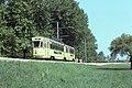 Trams de Neuchâtel (Suisse) (5047679528).jpg