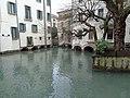 Treviso. 28.01.2020(6).jpg