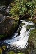 Triberger Wasserfälle 20180806 05.jpg