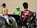Trooping the Colour, 16th June 2007.jpg