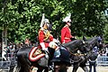 Trooping the Colour 2018 (08).jpg