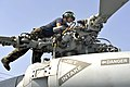 U.S. Navy Petty Officer 2nd Class Dina Chicas inspects a SH-60B Sea Hawk helicopter aboard the guided-missile destroyer USS Jason Dunham (DDG 109) as the ship operates at sea on Jan 130126-N-XQ375-118.jpg