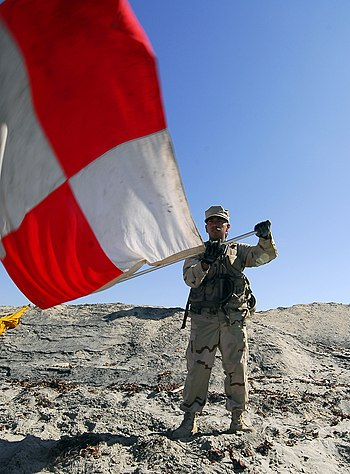 US Navy 081002-N-2832L-063 Information Systems Technician Seaman Miguel Reyes-Flores waves the uniform flag