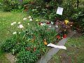 Ulrike Meinhof Grab Mai 2015 (2).JPG