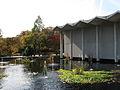 United States National Arboretum 5.JPG
