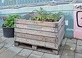Urban gardening at Schwendermarkt.jpg