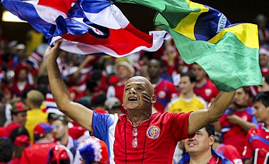 Uruguay - Costa Rica FIFA World Cup 2014 (23).jpg
