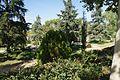 VIEW , ®'s - DigiGraf - Ð - ┼ , MADRID MUSEO AMERICA JARDÍN - panoramio (4).jpg