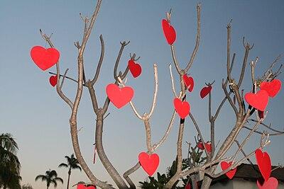 Valentinesdaytree.jpg