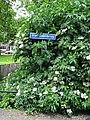 Van Galenbrug - Crooswijk - Rotterdam - Name plate (road).jpg