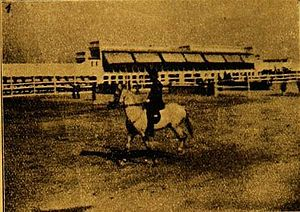Póvoa de Varzim Bullfighting Arena - Horse show in Velodromo (1911-1925) in Alto de Martim Vaz. The venue was replaced by Gomes de Amorim stadium, where bullfighting is known.