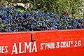 Vendanges de grenache à Tavel 2010.jpg