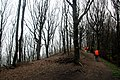 Via degli Dei, Firenzuola, dal Passo della Futa al monte Gazzaro 04.jpg
