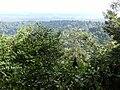 View Brownsberg.JPG
