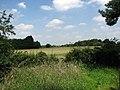 View north across wheat field - geograph.org.uk - 895583.jpg