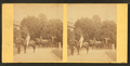 View of African American groom holding reins of horse with rider, from Robert N. Dennis collection of stereoscopic views 2.png
