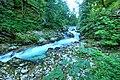 Vintgar Gorge (35811865645).jpg