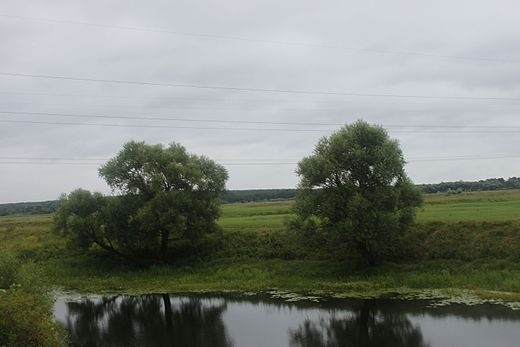 Vladimir and Suzdal Wikiexpedition (2016-08-13) 160.jpg