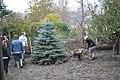 Volunteering (8619042911).jpg