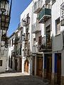 WLM14ES - Peñiscola 03052009 115316 00015 - .jpg