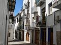 WLM14ES - Peñiscola 03052009 115321 00016 - .jpg