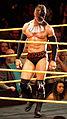 WWE NXT 2015-03-28 01-05-02 ILCE-6000 4185 DxO (17159487437).jpg