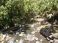 Waimea-Tal Fluss.jpg