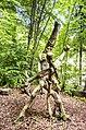 Waldmenschen Skulpturenpfad (Freiburg) jm9528.jpg