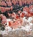 Walking in Beauty, Bryce Canyon N.P. 2009 (5877416615).jpg