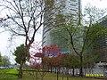 Wangjiadun Shangquan, Wuhan, Hubei, China - panoramio.jpg