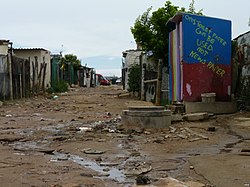 A part of Diepsloot in 2012. Wassup activists say the government should do more to maintain the community's environment in Diepsloot.