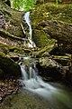 Waterfall On Vîlsan Valley (256158563).jpeg