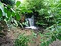 Waterfall Pencallenick Gardens - geograph.org.uk - 362914.jpg