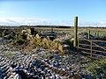 Waterhouse Farm ruins, Kennox Moss, East Ayrshire - view south-west from Gallowayford road.jpg