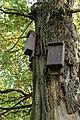 Weener - Hessepark - Hessepark 013 ies.jpg