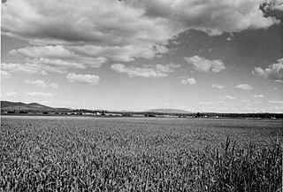 Clearwater County, Idaho County in Idaho, US