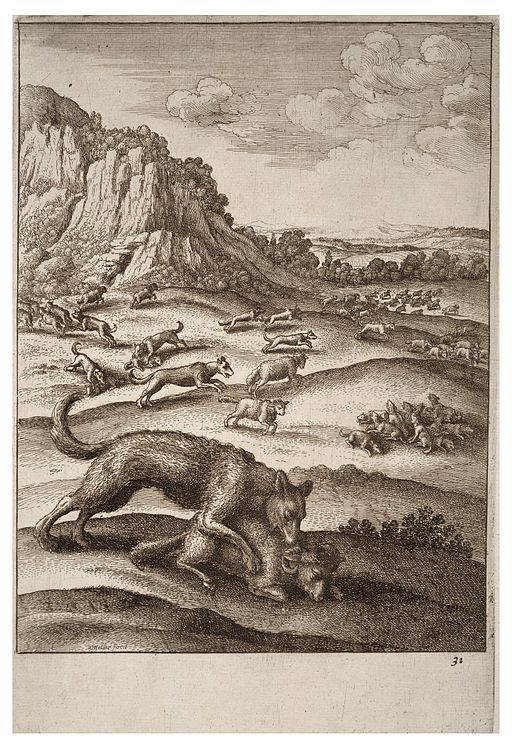 Wenceslas Hollar - The wolves and the sheep 2