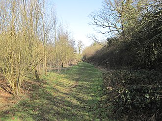 Whitings Hill Open Space - Image: Whitings Wood