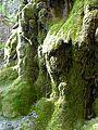 WikiProjekt Landstreicher Wasserfall Hinang 47.jpg