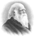 William Cullen Bryant steel engraving.png