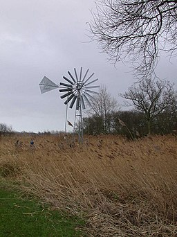 Windpump, Woodwalton Fen - geograph.org.uk - 678512