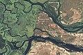 Zambezi ali 2010128.jpg