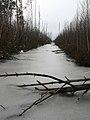 ^drainage canal - panoramio.jpg
