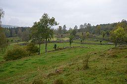 De Västra indmarker