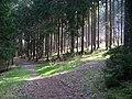 Řehenice-Babice, rozcestí u Gabrhelí (01).jpg