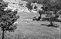 Альплагерь «Узункол» 72-76 (43).jpg