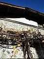 Банско November 2012 - panoramio (101).jpg