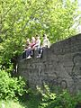 Дендрологічний парк 165.jpg