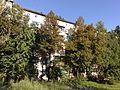 Дом - panoramio (9).jpg